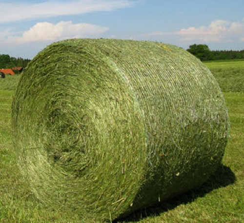 Round Bales Placeable