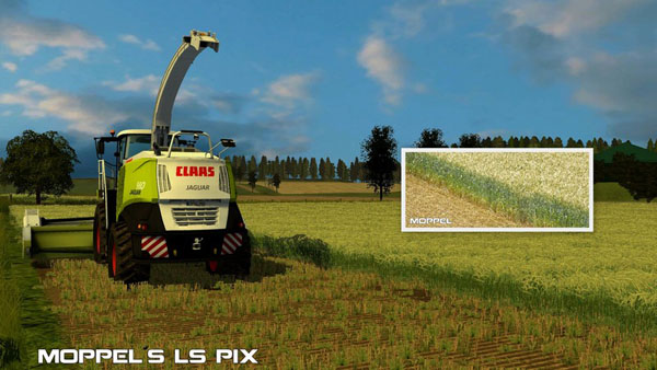 Whole plant silage Texture