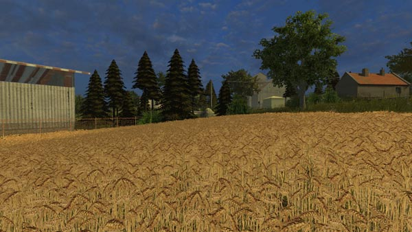 Realistic Wheat Texture